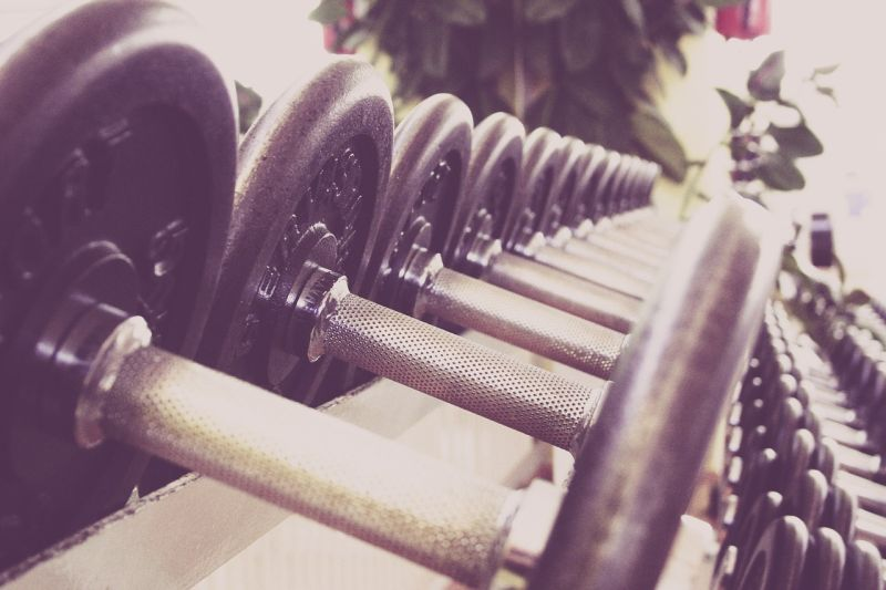 halteres musculation